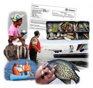 MNR Fishing