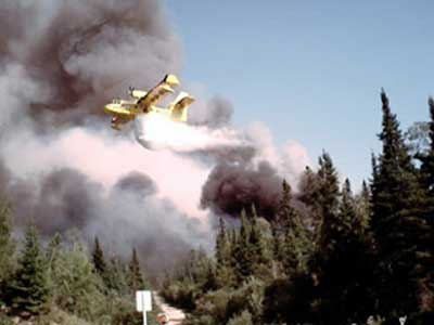 Waterbomber in action